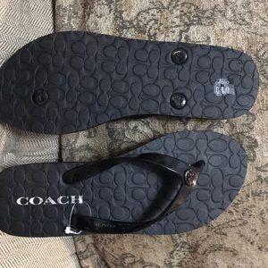Coach Shoes - Women's Coach Sandals